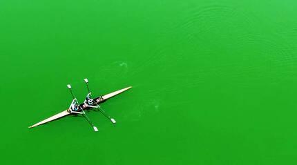 <이달의보도사진상 - 최우수상> 불볕 더위를 보인 20일 오후 용인시 기흥구 신갈저수지에서 조정경기 선수들이 녹색 물감을 풀어 놓은 듯 물이 온통 초록색으로 변한 녹조호수 위에서 훈련을 하고 있다. 사진기자협회.