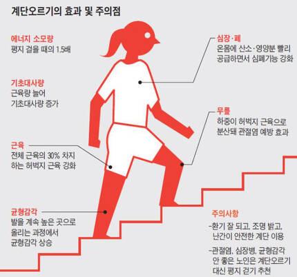 계단 오르기는 심폐기능 향상과 관절염 예방에 좋은 운동이나 자신의 건강상태에 맞게 올바른 자세로 해야 효과를 볼 수 있다./사진=조선일보 DB