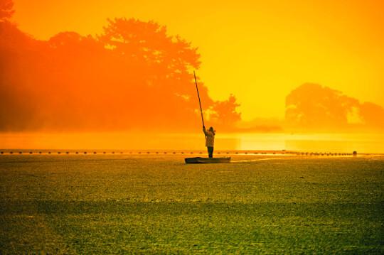 경남 창녕의 우포늪은 가을에 더 큰 매력으로 다가온다. 아침 햇살이 물들여 놓은 물안개와 물풀이 펼쳐놓은 초록융단이 몽환적인 풍경을 그려내고 있다. 한 어부가 장대 거룻배인 이마배를 타고 습지를 미끄러지듯 나아가고 있다.