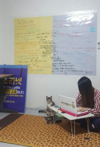 사무실에서 인터넷에 유통되는 성폭력 동영상을 모니터링하고 있는 '디지털성범죄 아웃(DSO)'의 하예나 대표.