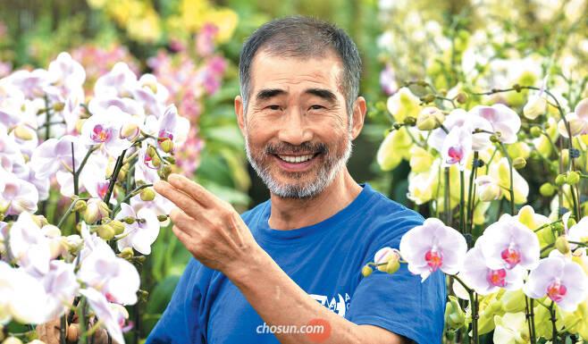 """호접란 명인 박노은씨에게 꽃향기를 맡아봐 달라고 하자 """"이 꽃은 향기가 없는 꽃""""이라고 답했다. 호접란에 하고 싶은 말이 있느냐고 묻자 """"잘 자라줘서 고맙습니다""""라고 존대했다. 싹 틔우고 꽃 피우기까지 4년 걸리는 호접란은 박씨에게 아들 같은 존재였다. / 신현종 기자"""