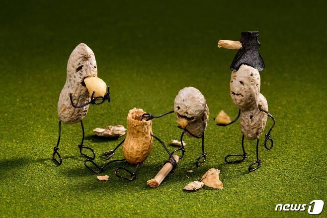 테리 보더, 뇌를 먹는 땅콩 좀비 Zombies Are Nuts about Brains (사비나미술관 제공) © News1