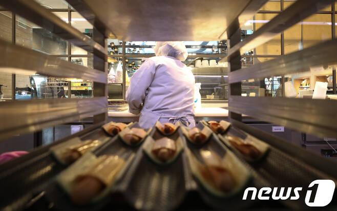 서울 시내의 한 파리바게뜨 지점에서 제빵사가 빵을 만들고 있다. /뉴스1 © News1 허경 기자