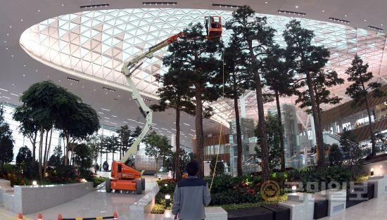 국내 공항에 처음으로 조성된 '인공숲'.