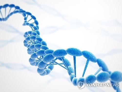 DNA [자료사진] [출처: 게티이미지뱅크]
