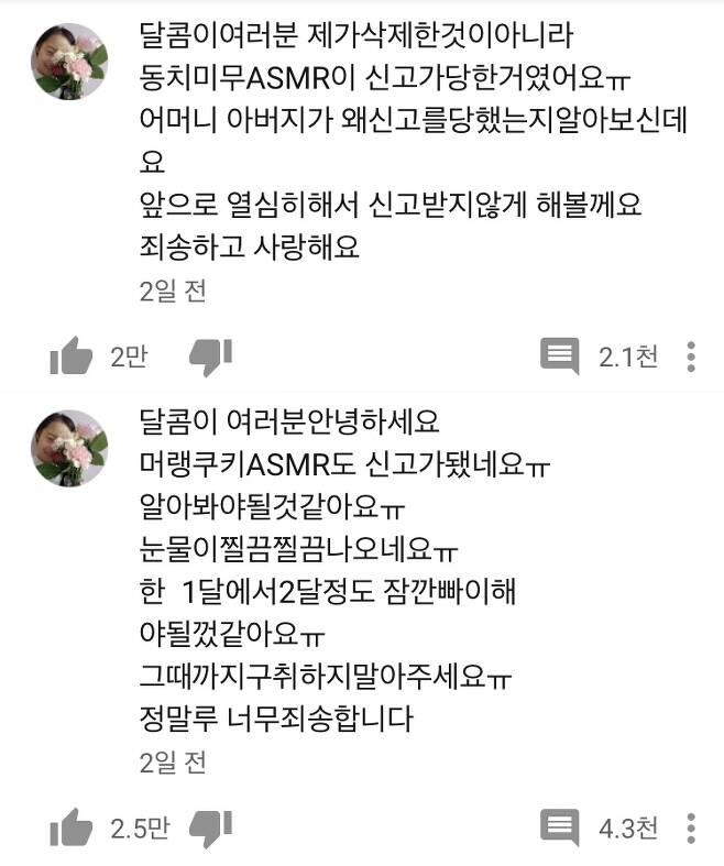 /사진=유튜브 '띠예' 채널 캡처