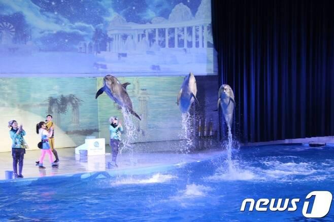 태지가 공연하는 모습.(핫핑크돌핀스 제공)© 뉴스1