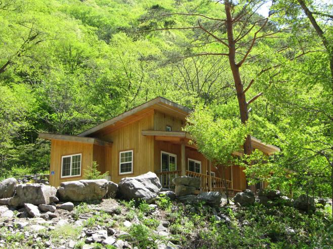 두타산 자연휴양림