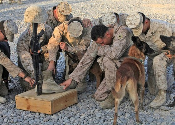 이라크에서 급조폭발물(IED) 해체작업에 참가했던 미국 해병대의 군견병이 사망하자 동료 해병들과 군견이 슬퍼하고 있다. 2003년 이라크전은 미국의 군산복합체가 일으킨 전쟁으로 보는 견해가 있다. [사진 미 해병대]