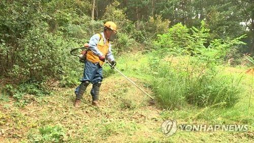 예초기 보호장비 [연합뉴스TV 제공]