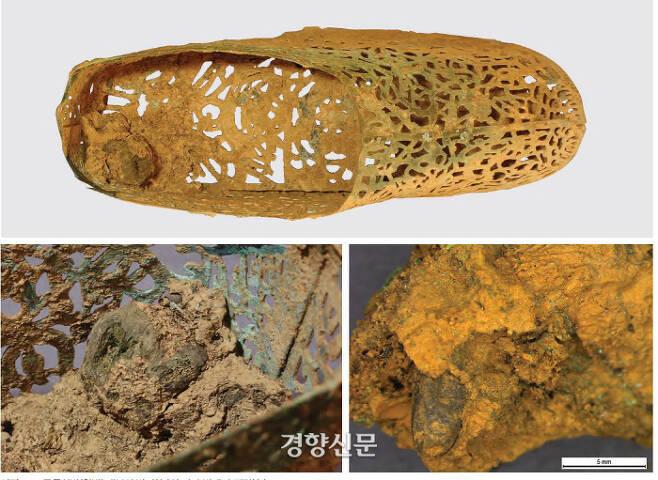 정촌고분에서 확인된 금동신발(위). 신발 안에는 사람의 발뼈(사진 아래의 왼쪽)와  파리 번데기 껍질(오른쪽)이 보였다.