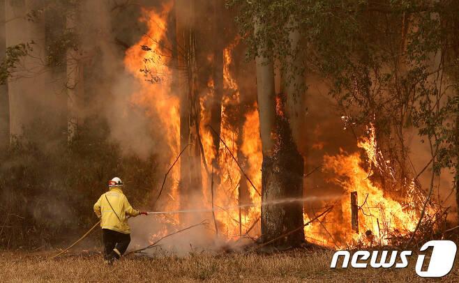 호주 산불 © 로이터=뉴스1
