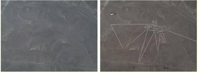 새(오른쪽은 윤곽을 뚜렷하게 표시한 가공사진)