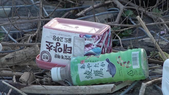 규슈 해안에 버려져 있는 플라스틱 고추장통. [사진 공성룡]