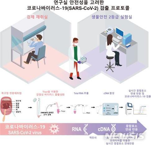 [대전=뉴시스] 신종 코로나바이러스 감염증(코로나19)의 감염여부를 실험실에서 신속히 확인할 수 있는 기술이 IBS에 의해 개발됐다. 무증상자를 타킷으로 하는 이번 기술은 진단비용은 1만8000원 미만이고 소요 시간은 4시간 이내다.