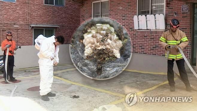소방관 '벌집제거'(CG) [연합뉴스TV 제공]