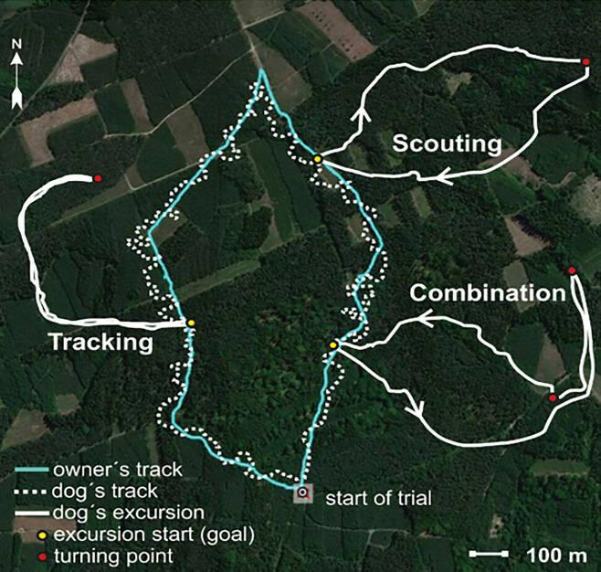 개 위성추적 결과. 하늘색은 주인, 점선은 개 경로. 왼쪽 흰색 실선(Tracking)은 간 길을 되짚어 온 경로. 오른쪽 아래(Combination)는 일부는 되짚어 오고 일부는 새길로 온 경로. 오른쪽 위(Scouting)는 완전히 새로운 경로로 돌아온 경로. 방향을 틀기 전 남북 지자기 방향으로 20m 쯤 달리는 특이한 행동을 했다. 베네딕토바 외 (2020) '이라이프' 제공