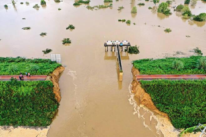 폭우에 뚫린 낙동강 제방 - 지난 9일 경남 창녕의 낙동강 제방이 일부 무너지며 인근 구학·죽전마을이 물에 잠겨 있다. /경남도