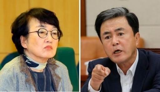 열린민주당 김진애(왼쪽) 의원, 국민의힘 김태흠 의원. 연합뉴스