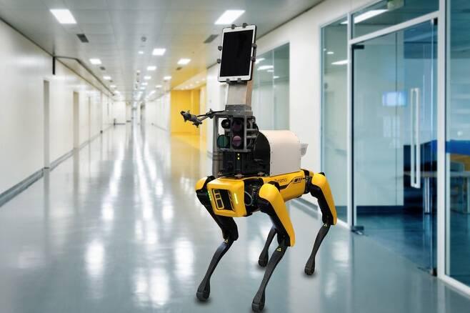 미국 보스턴의 브리검여성병원에서 환자 1차 진단을 도운 로봇개 스폿./MIT