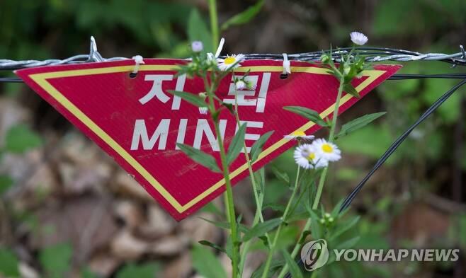 지뢰 푯말 [연합뉴스 자료사진]