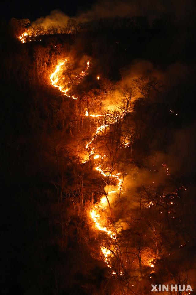 [토간틴스주(브라질)=신화/뉴시스] 지난해 8월17일 브라질 토간틴스주 아마존 열대우림에서 화재가 발생했다. 사진은 맹렬한 기세로 열대우림을 태우고 있는 불길. 2020.03.26