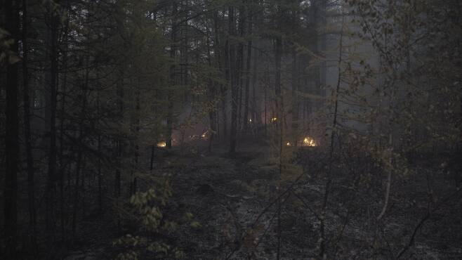 시베리아의 숲에선 화재 진압에도 불구하고 땅 속 불길이 끊임없이 살아나 나무를 태웠다. 사진 sreda studio