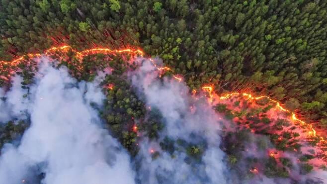 지난 7월 시베리아의 숲을 태우고 있는 산불의 모습이다. 그린피스에 따르면, 러시아에서는 한국의 1.3배 면적에 해당하는 1900만 헥타르가 올해 산불로 탔다. 최근 유난히 북극권 산불이 잦은 이유로 지하 토탄층에 남아 있던 전 해 산불 및 들불의 불씨가 이듬해 다시 타오르는 '잔존산불'이 거론되고 있다. 그린피스 제공
