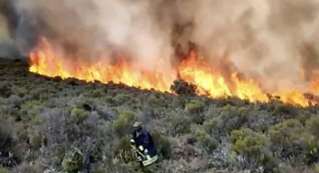 산불 피해가 발생한  킬리만자로산의 모습