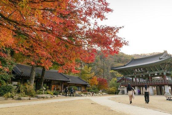 월정사 금강루의 가을 모습.