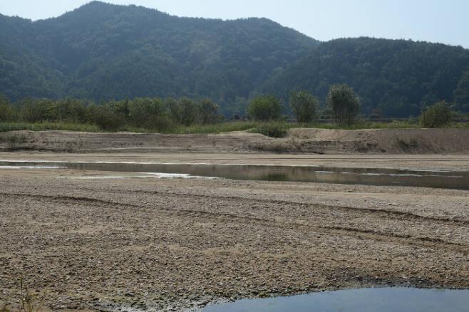 2020년 10월 17일 회룡포. 위의 2013년 모습과 같은 위치. 생태지평 시민생태조사단 제공.