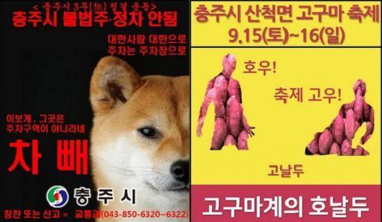김선태 주무관이 제작한 충북 충주시의 홍보물./사진=온라인 커뮤니티