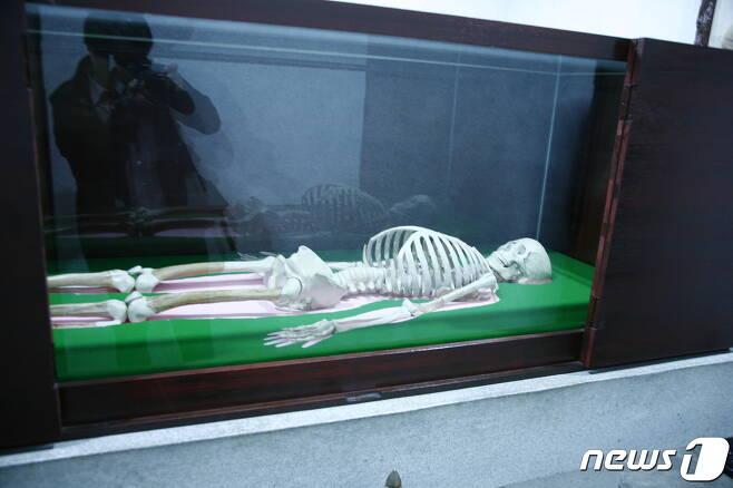 평양 조선중앙역사박물관에 전시돼 있는 단군 유골의 모형. (이준희 제공) 2020.11.07. © 뉴스1