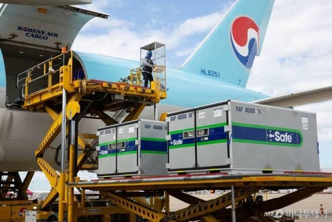 [서울=뉴시스] 특수 컨테이너가 대한항공 화물기에 탑재되고 있는 모습. (사진=대한항공 제공) 2020.10.07.   photo@newsis.com