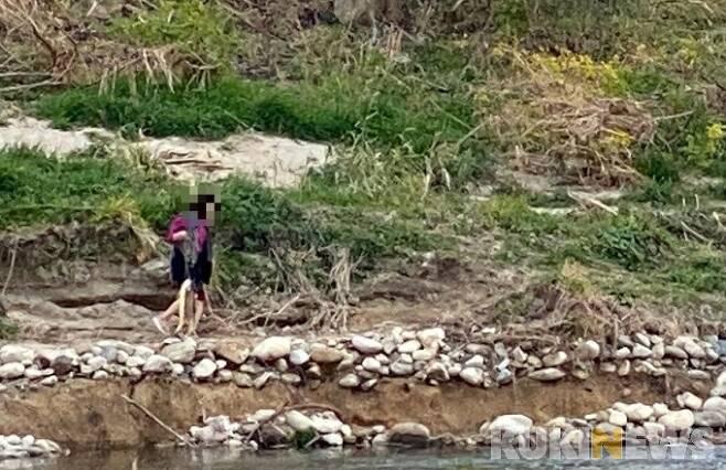 [강릉=쿠키뉴스] 강은혜 기자 =강원 강릉시 남대천에서 한 시민이 연어를 포획하고 있는 모습.