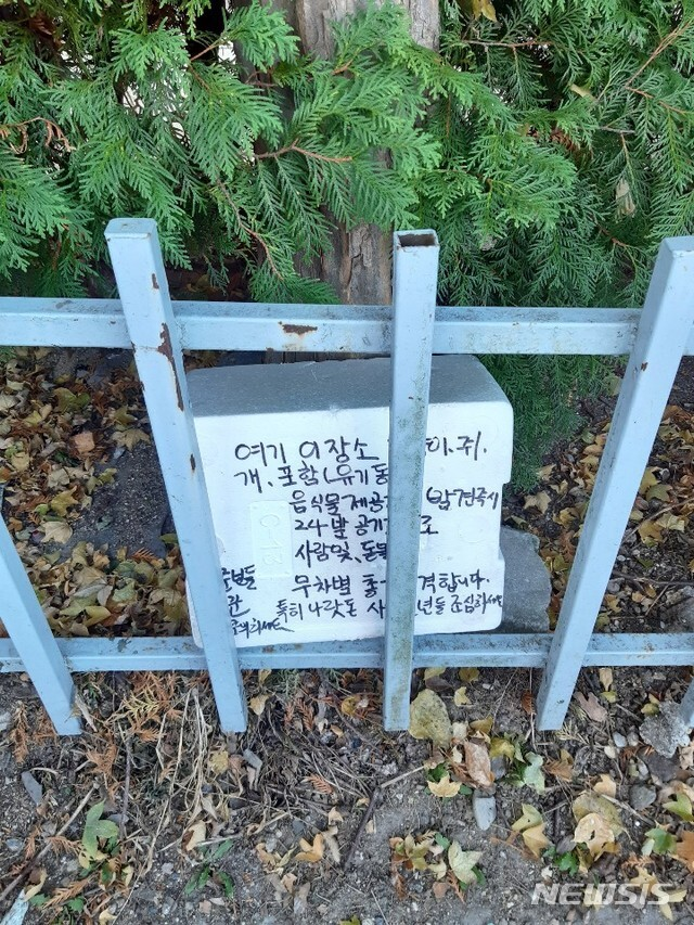 전주시 완산구 평화동 주공 2차 아파트 부근 집 없는 길고양이들에게 먹이를 주는 곳에 경고문구를 적은 박스가 놓여 있다.