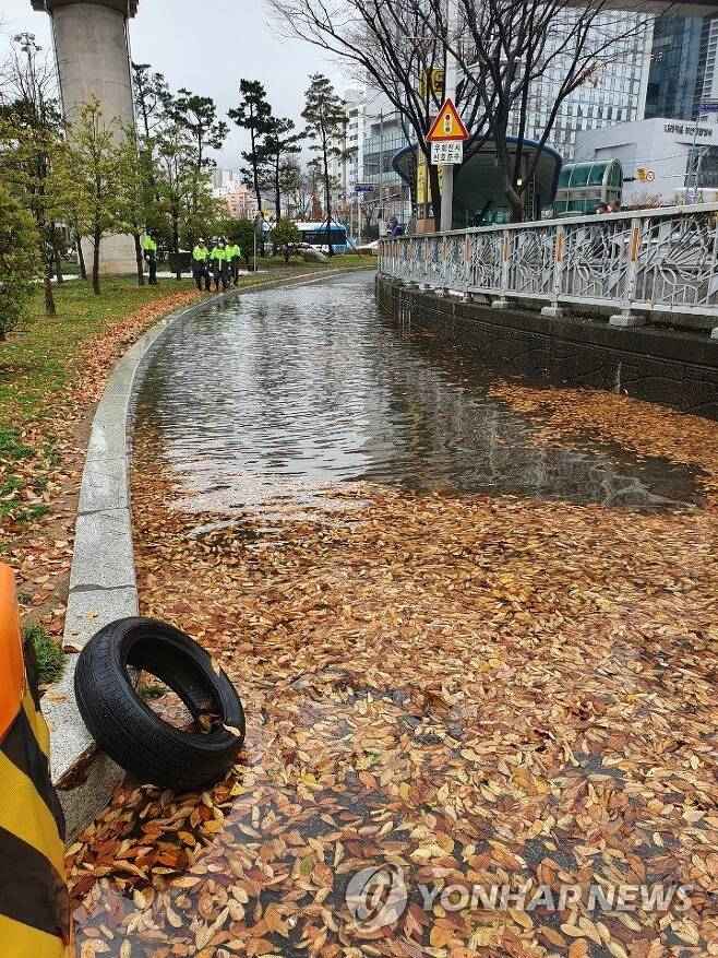 비에 쓸린 낙엽이 배수로 막아 물바다 된 도로 (부산=연합뉴스) 19일 오전 9시 50분께 부산 연제구 남문구 교차로 1차선 우회전 도로에 비에 쓸려온 낙엽이 배수로를 막아 도로에 물이 흥건하다. 이 때문에 도로가 통제됐고 관할 구청이 배수 작업을 벌이는 중이다. 2020.11.19 [부산경찰청 제공. 재판매 및 DB 금지] wink@yna.co.kr