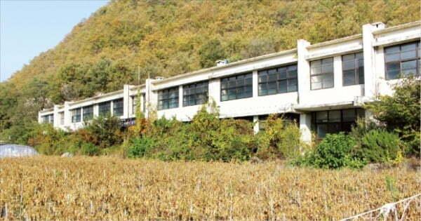 인구 감소를 견디지 못하고 결국 폐교된 경북 의성의 한 중학교 운동장에 비닐하우스와 고추밭이 들어서 있다.