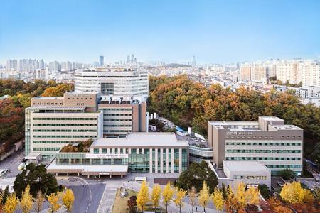 보라매병원이 최근 건강보험심사평가원이 발표한 '2020년 의료질평가'에서 최우수등급인 1등급을 획득했다./사진=보라매병원 제공