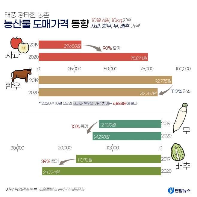 한우만큼 비싼 '금(金)사과' [제작 진가영 인턴기자]