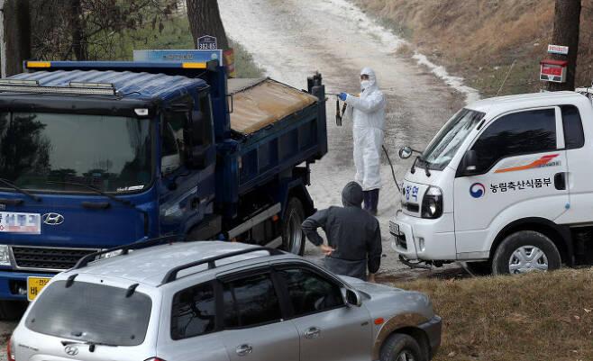 조류인플루엔자(AI)가 검출된 전남 장성의 한 오리농장 앞에서 지난 11일 방역 당국 관계자가 출입 차량을 소독하고 있다. 연합뉴스 제공
