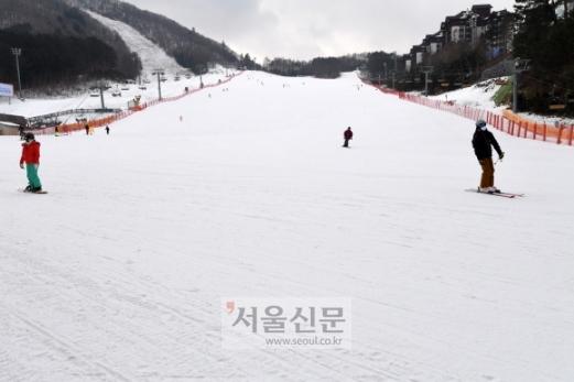 - 정부가 이날 24일부터 겨울 스포츠시설의 문을 닫기로 발표한 가운데 강원 평창 용평스키장이 한산한 모습을 보이고 있다.평창 도준석 기자 pado@seoul.co.kr