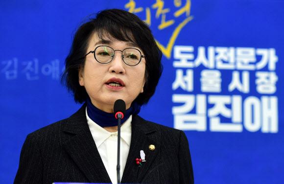 김진애 의원.연합뉴스