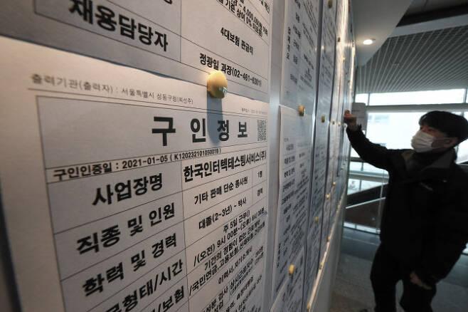 서울 성동구청 내 성동구 희망일자리센터에서 관계자들이 관내 기업들의 구인 정보들을 살펴보고 있다. (사진=연합뉴스)
