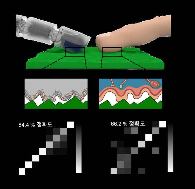 전자 피부가 물체 표면과 접촉할 때를 나타낸 모식도 및 개발된 전자 피부와 인간 피부가 임의의 물체를 감지할 수 있는 정확도.[포스텍 제공]