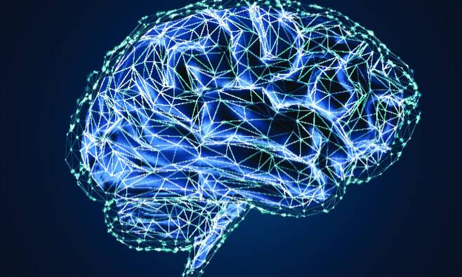 두려움 없애고 자신감 키워…무의식적인 뇌 조작 방법 발견