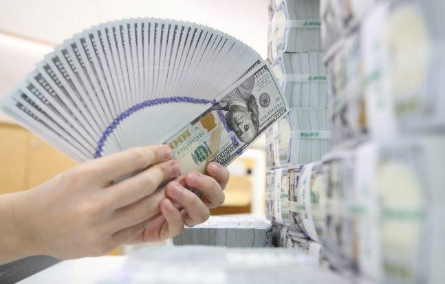 서울 중구 하나은행에서 직원이 달러화를 확인하고 있다.ⓒ뉴시스