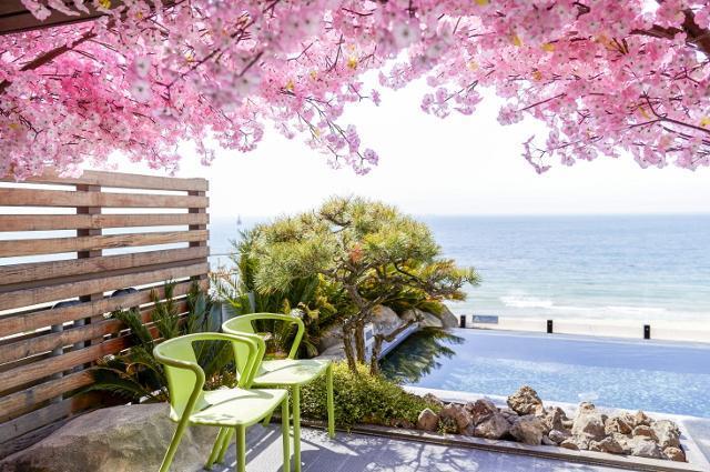 부산 해운대의 5성 호텔인 파라다이스호텔 부산이 MZ세대 맞춤형으로 준비 중인 '봄꽃 스파'. 파라다이스호텔 부산 제공