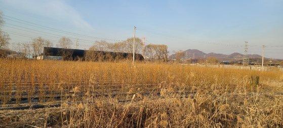 한국토지주택공사(LH) 직원들의 땅 투기 의혹이 제기된 경기도 시흥시 과림동 일대. 채혜선 기자