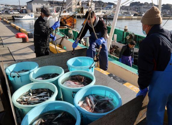 지난달 일본 후쿠시마현 이와키시 소재 오나하마항에서 현지 수산업 종사자가 후쿠시마 앞바다에서 잡힌 생선을 지게차에 싣고 있다. (사진=연합뉴스)
